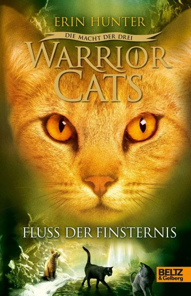 Buch Warrior Cats