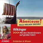 Abenteuer! Wikinger, 1 Audio-CD