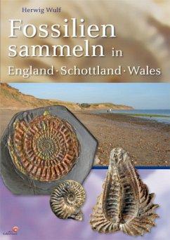 Fossilien sammeln in England - Schottland - Wales - Wulf, Herwig