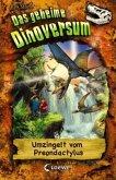 Umzingelt vom Preondactylus / Das geheime Dinoversum Bd.17