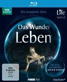 Life - Das Wunder Leben, Die komplette Serie (4 Discs)
