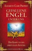 Gefallene Engel - Der Kampf um den spirituellen Aufstieg