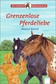 Grenzenlose Pferdeliebe / Reiterhof Birkenhain Bd.5