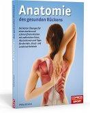 Anatomie des gesunden Rückens