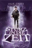 Sturz in die Zeit / Zeitreise Trilogie Bd.1