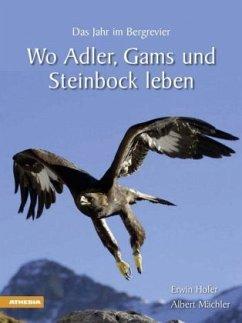 Wo Adler, Gams und Steinbock leben
