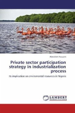 Private sector participation strategy in industrialization process