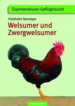 Welsumer und Zwerg-Welsumer - Harmayer, Friedhelm