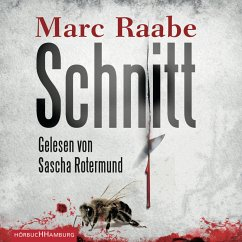 Schnitt (MP3-Download) - Raabe, Marc