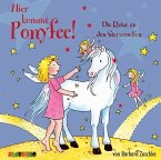 Die Reise zu den Sternenelfen / Hier kommt Ponyfee! Bd.20 (1 Audio-CD)