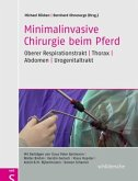 Minimalinvasive Chirurgie beim Pferd