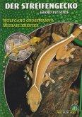 Der Streifengecko