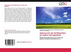 Aplicación de fertilizantes al cultivo del gladiolo