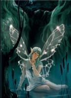 Celtic Fairy Desk Notebook Von Eldar Minibaev Buch