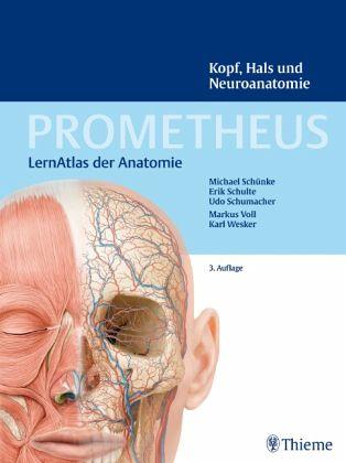Kopf, Hals und Neuroanatomie / Prometheus - Schünke, Michael; Schulte, Erik; Schumacher, Udo