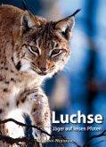 Luchse