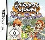 Harvest Moon: Geschichten zweier Städte (Nintendo DS)