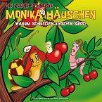 Warum schmecken Kirschen süß?, 1 Audio-CD / Die kleine Schnecke, Monika Häuschen, Audio-CDs Nr.29