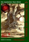 Hexenjahr / Im Schatten der Hexen Bd.2