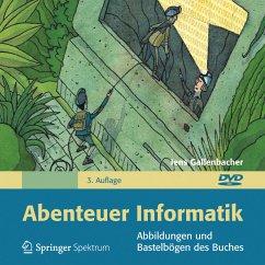 Abenteuer Informatik, 1 DVD-ROM