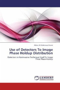 Use of Detectors To Image Phase Holdup Distribution