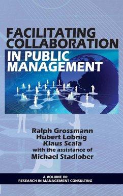 Facilitating Collaboration in Public Management (Hc)