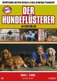 Der Hundeflüsterer - Season 1