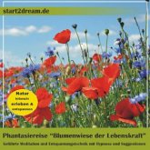 """Phantasiereise """"Blumenwiese der Lebenskraft"""""""