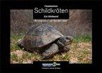Faszination Schildkröten