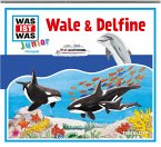 Wale & Delfine / Was ist was junior Bd.26 (1 Audio-CD)