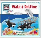 Wale & Delfine / Was ist was junior Bd.26 (1 Audio-CD)
