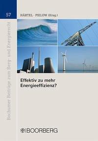 Effektiv zu mehr Energieeffizienz?