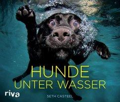 Hunde unter Wasser - Casteel, Seth