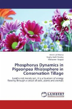 Phosphorus Dynamics in Pigeonpea Rhizosphere in Conservation Tillage
