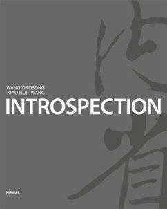 IntroSpection - Wang Xiaosong; Wang, Xiao Hui