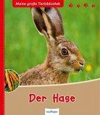 Der Hase / Meine große Tierbibliothek