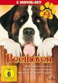Beethoven - Teil 1-3 (3 Discs)