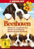 Beethoven - Teil 4-6 DVD-Box