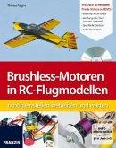 Brushless-Motoren in RC-Flugmodellen richtig einstellen, betreiben und warten