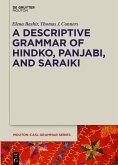 A Descriptive Grammar of Hindko, Panjabi, and Saraiki (eBook, PDF)