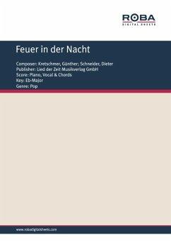 Feuer in der Nacht (eBook, PDF) - Kretschmer, Günther; Schneider, Dieter