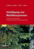 Schädigung von Waldökosystemen
