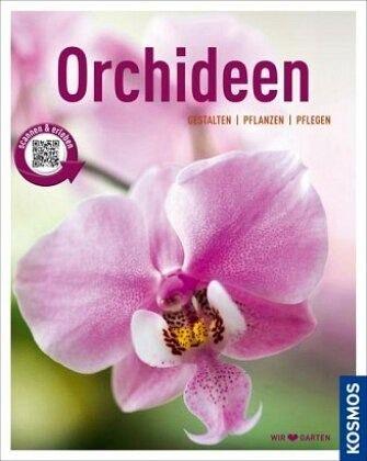 orchideen mein garten von joachim erfkamp buch. Black Bedroom Furniture Sets. Home Design Ideas