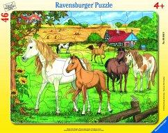Ravensburger 06646 - Pferde auf der Koppel, Rah...