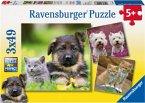 Ravensburger 09423 - Hunde und Katzen, Puzzle, 3x49 Teile