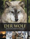 Der Wolf, m. DVD