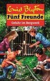 Gefahr im Bergwerk / Fünf Freunde Bd.67