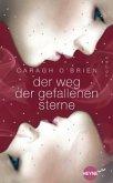 Der Weg der gefallenen Sterne / Gaia Stone Trilogie Bd.3