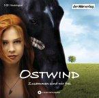Zusammen sind wir frei / Ostwind Bd.1 (1 Audio-CD)