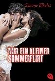 Nur ein kleiner Sommerflirt / Avi Trilogie Bd.1